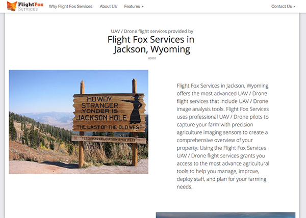 VinceRodDesigns Flight Fox Service